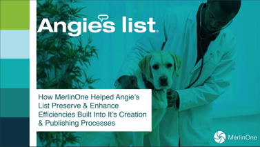 Angie's List Case Study Cover Image