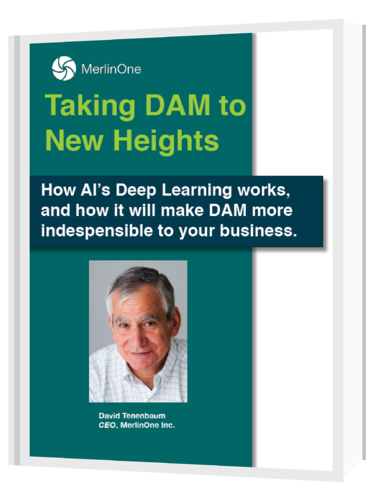 ai spotlight taking dam to new heights e book